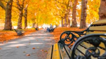 Guarda tus cosas de verano ahora que ha llegado el otoño 6