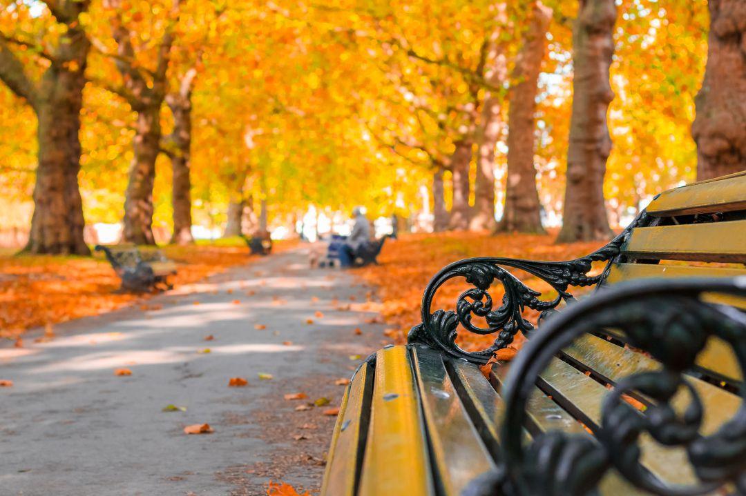 Guarda tus cosas de verano ahora que ha llegado el otoño 1